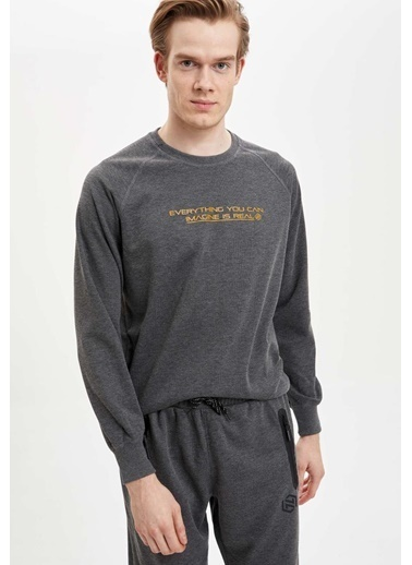 Defacto –Fit Sweatshirt Gri